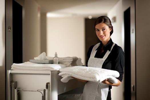 Maid-At-Work
